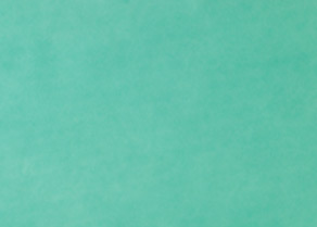 Tray Paper green